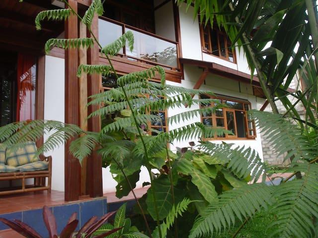 Haus am Rande des Urwalds