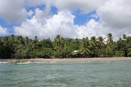Kingki Beach - Malabusog, Roxas
