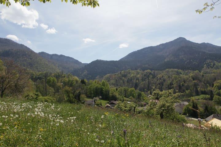 T2 Massif des Bauges, St Offenge /calme,verdoyant