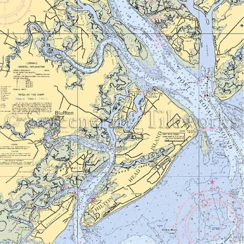 Bruce J Guide to the Low Country.