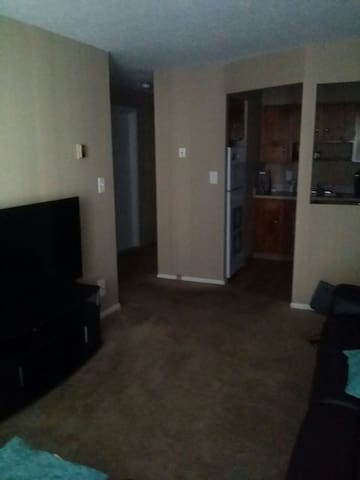 Lakeview 1BD furnished Apt. balcony - Euclid - Appartement