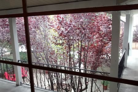 9 Min Walk to BART, Charming Private Room - Lafayette - Apartment