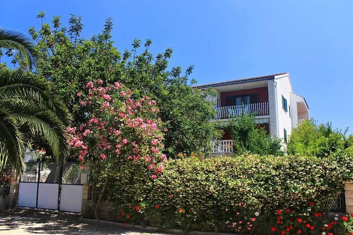 Two bedroom apartment with terrace Lovište, Pelješac (A-10182-d) - Lovište - Flat