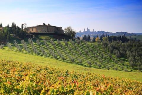 MARGHERITA, διπλό στο San Gimignano