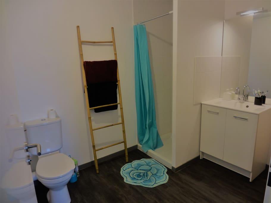 salle de bain avec une grande douche, toilettes, serviettes, eau chaude.