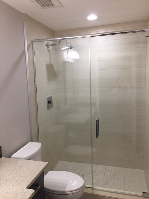 Beautiful glass, stand up shower to relax and unwind