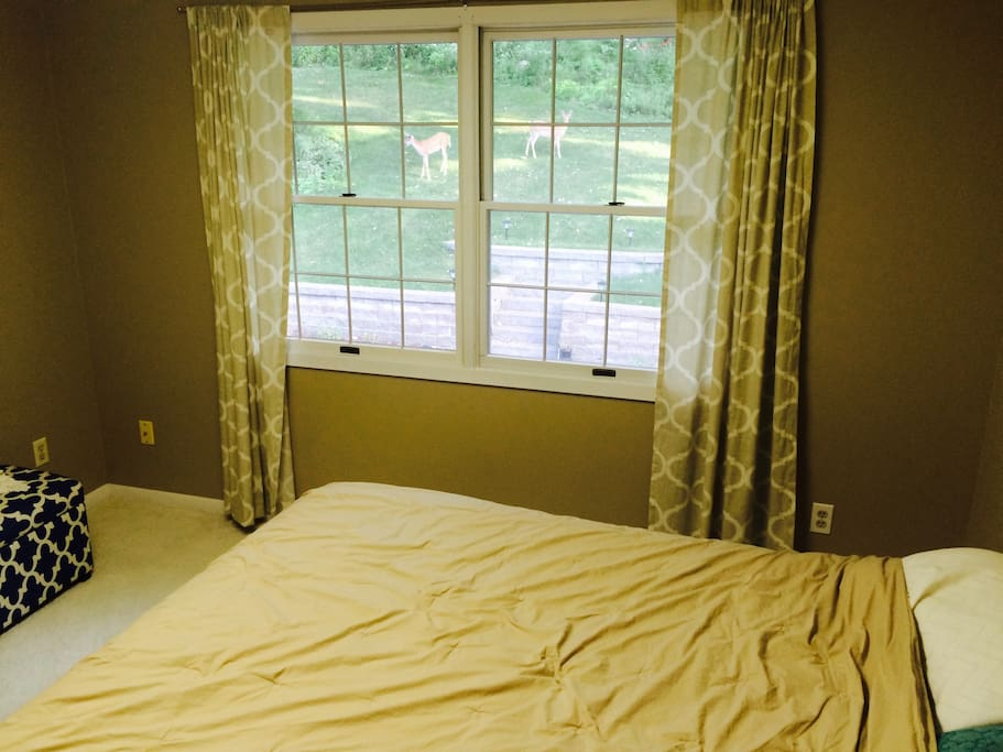 Bedroom 1. Queen bed with view of back yard.