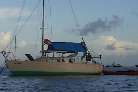 Cozy 22 Foot Eco Sailboat w/Kayaks - Cayo Hueso