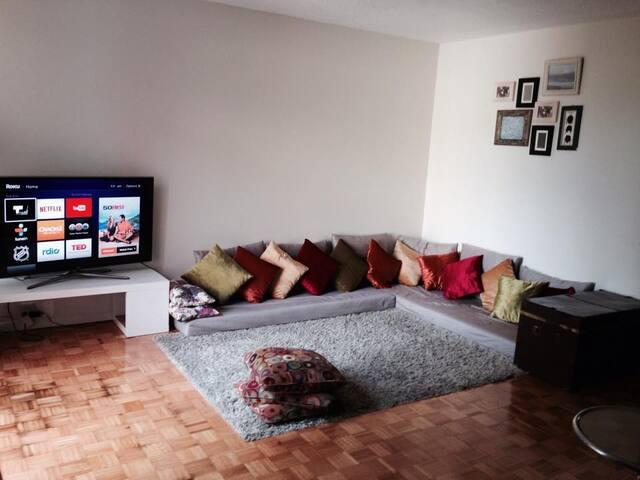 Cozy 2 bedrooms Apartment - chestnut hill - Apartamento