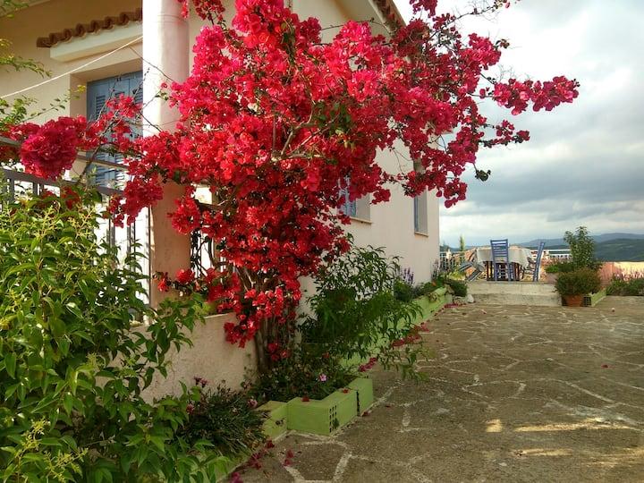 """villa """"BELLA LUNA""""  Ancient Olympia"""