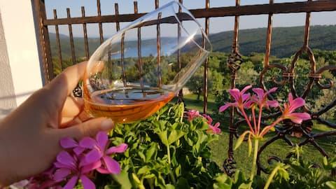 SUN WINE AND VIEW app. Leticija