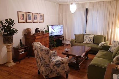 House with parking place and garden - Sarajevo - House