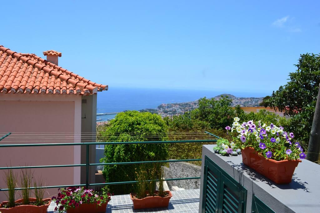 View/Terrace
