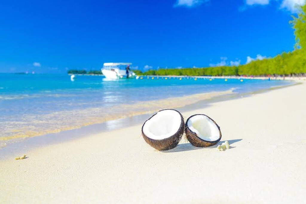 mon choisy beach,our end,our coconut :) photo by joszef vas