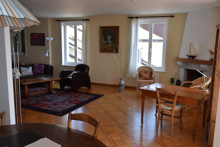 Large flat on lakefront - Nyon - Appartement