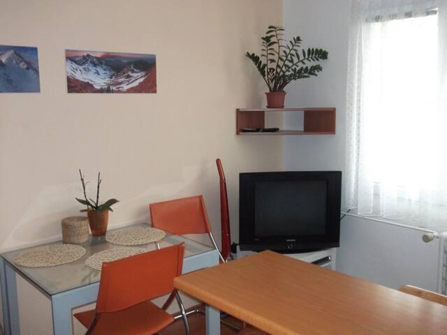 2+kk in Pilsen (Slovany) - Pilsen - Lägenhet