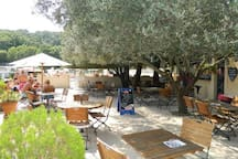 Terras near pool and restaurant/snack