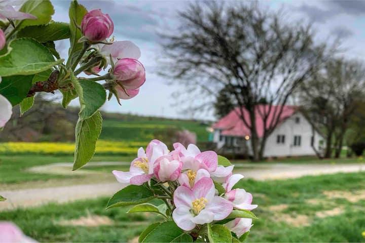 Farmhouse at Morris Orchard  25 min to LU
