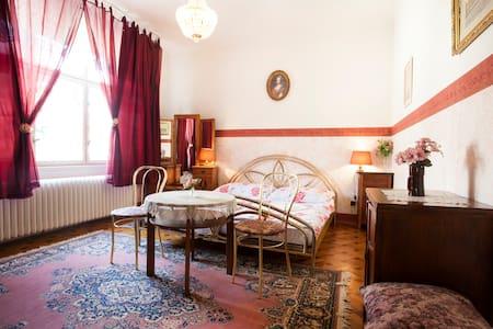 Apartm.for 4 (+1)pers.under Castle - Dejvice-Prague 6