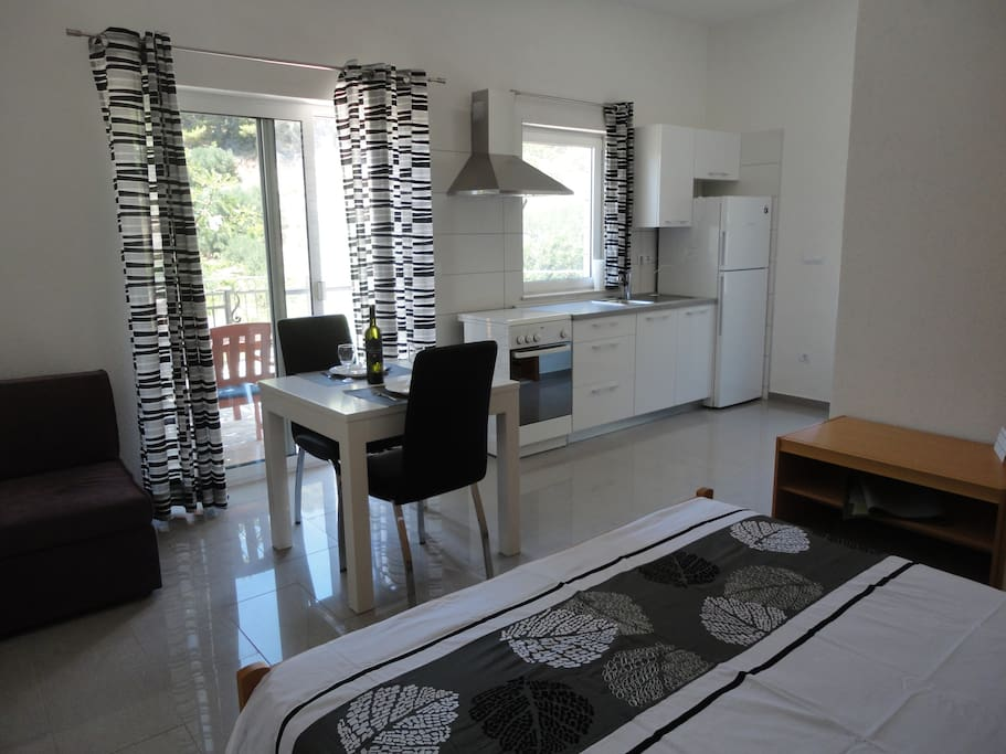 Spacious studio apartment with fully equipped kitchen