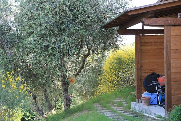 Casa bifamiliare nella campagna. - Livorno - Townhouse