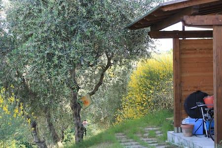 Casa bifamiliare nella campagna. - Livorno
