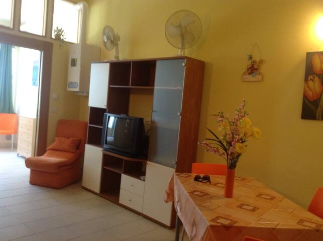 Lovely beachfront flat near Pescara - Montesilvano - Apartemen