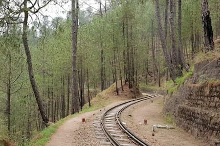 2 Bedroom   Pine Forest   Toy Train View   Kasauli