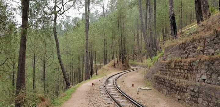 2 BR Serviced Apt | Nature | Toy Train | Kasauli