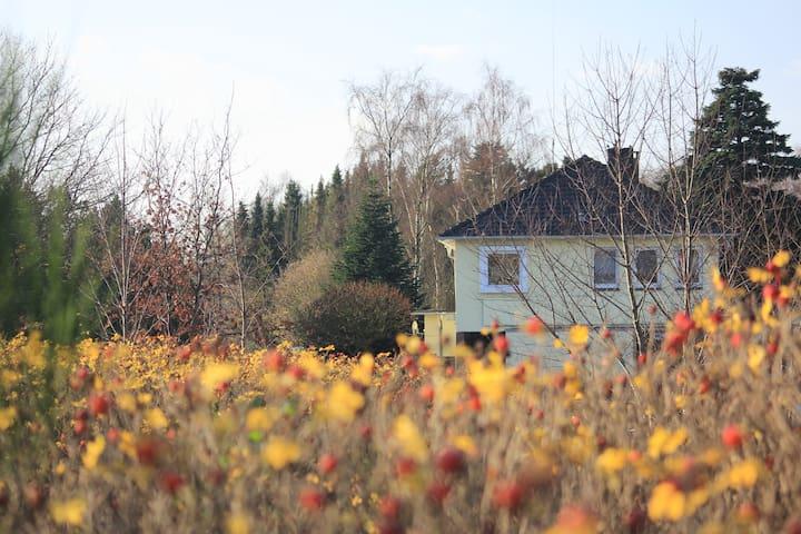 Route 401 - Edewecht - Hus