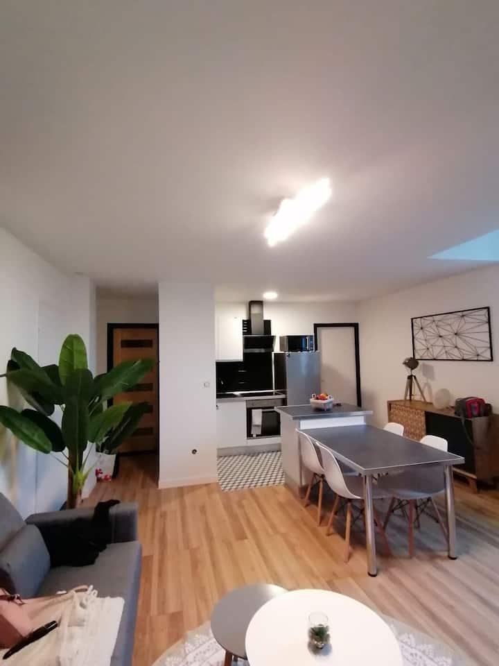 Appartement refait à neuf proche centre ville