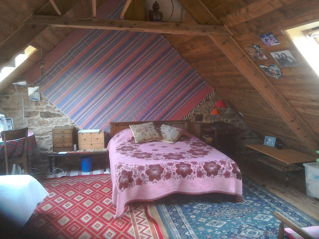 Spacious attic room in attractive town house - Guingamp