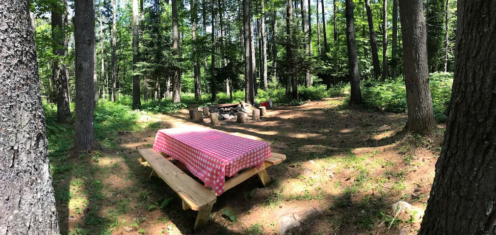 Woodland Grove Primitive Camping