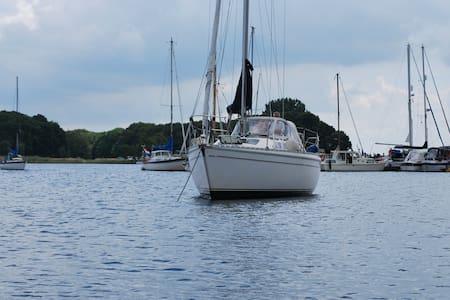 Beau voilier de 10 m au cœur de la Zelande - Kortgene - Boot