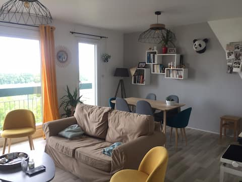 Appartement avec vue sur Nantes et la Loire