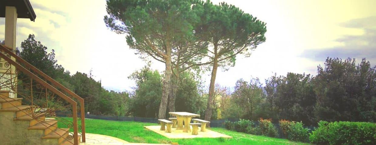 Villa Alba Chiara - Casciano - Apartment