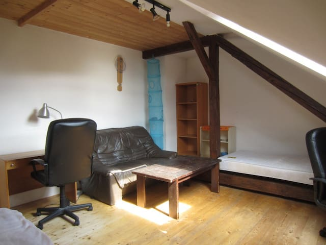One room in a family house - Brno - Casa