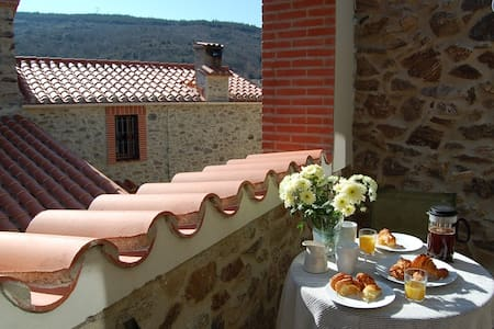 One-bedroom house in pretty village - Cassagnes - House