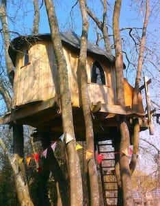 Treehouse Tara