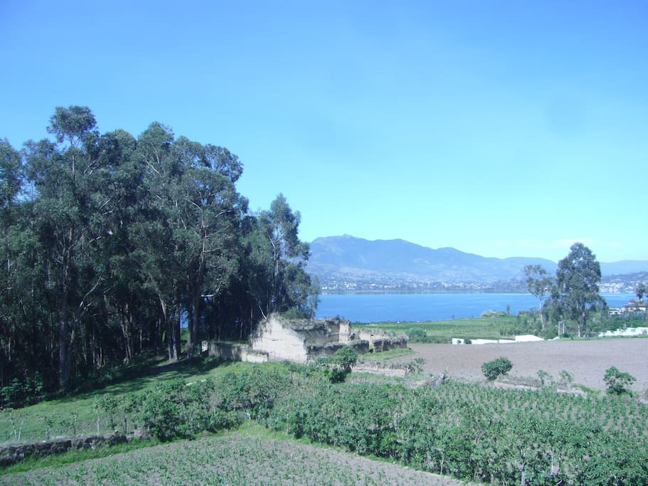 View of lake San Pablo from the terraza