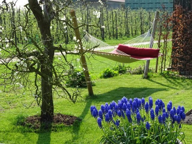Lovely house & peacefull garden in the countryside