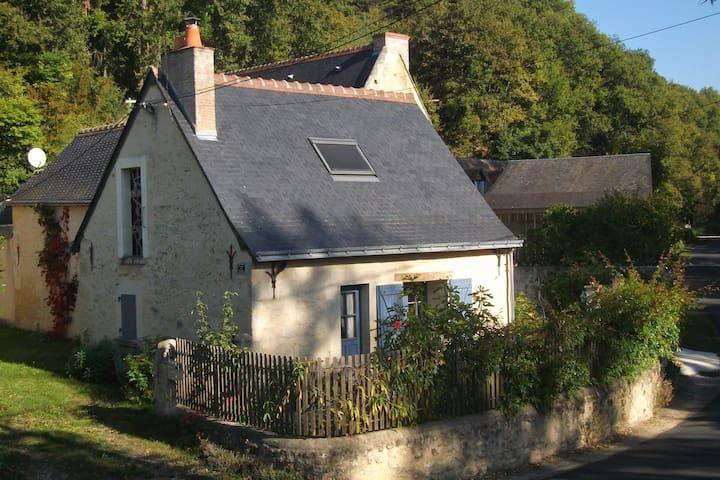 Maison d'artiste insolite, proche d'Azay le Rideau