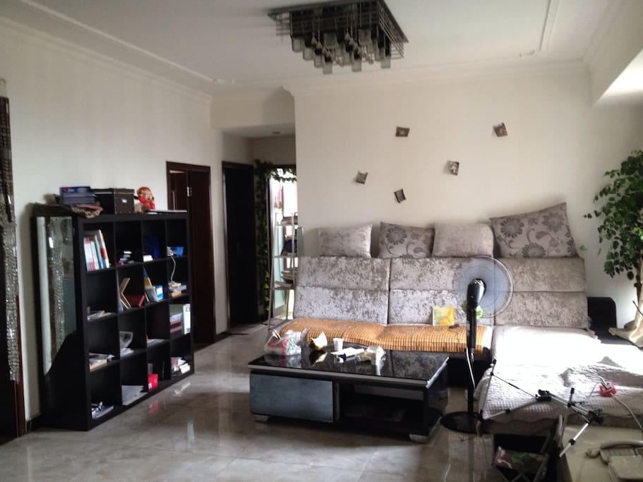 沙发和书柜