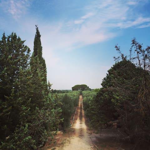 Masseria nel Salento, a pochi km da Lecce