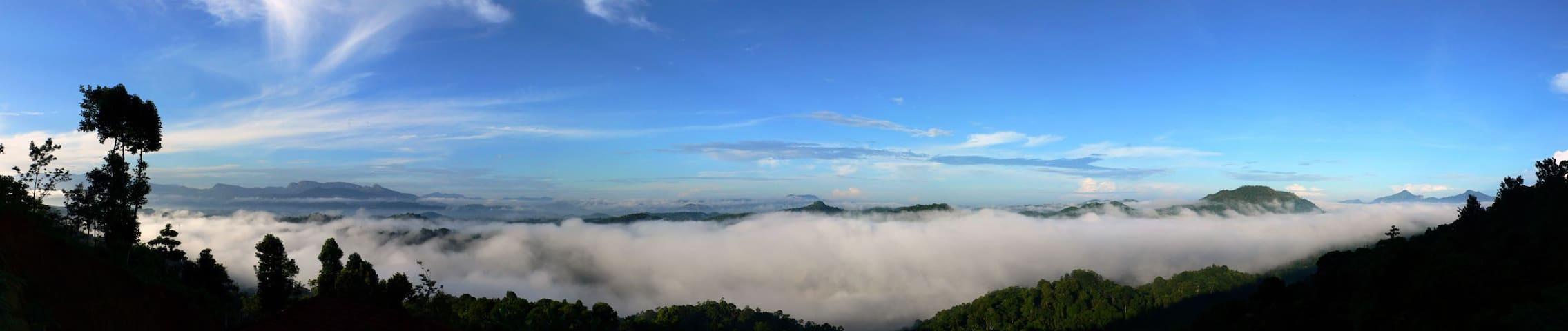 Domaine de Bellevue - Kandy - Bungalow