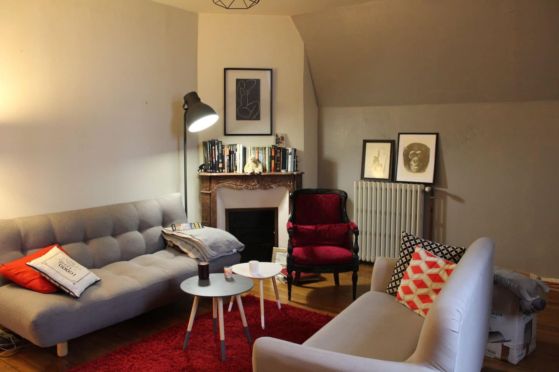 appartement amboise avec vue sur la loire / Flat in Amboise with magnifient view on Loire