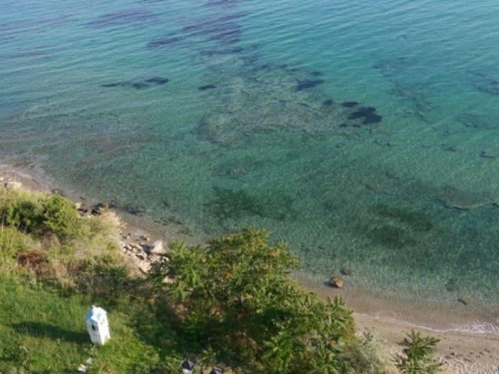 SEAHORSE- BEACH, GARDEN APARTMENT