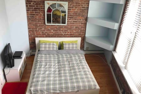 Beautiful One Bedroom apt. with private rooftop.