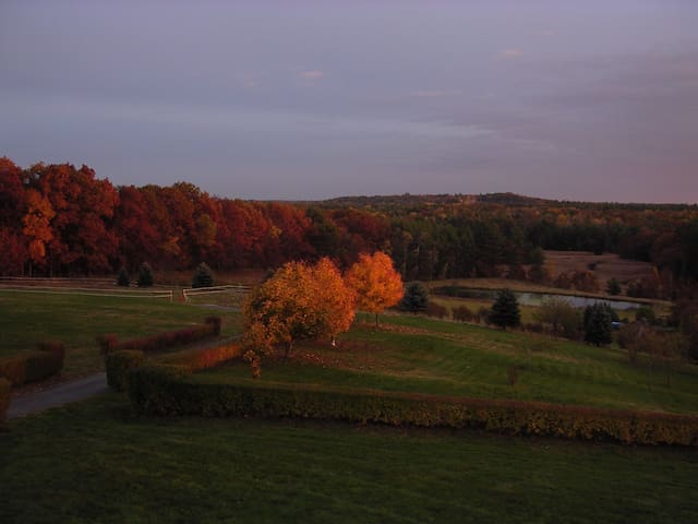 Bird's Eye View Farm
