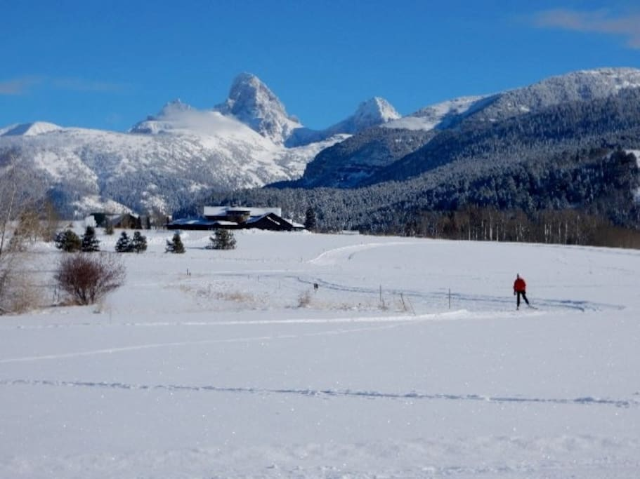 The nordic ski track just off the back patio!